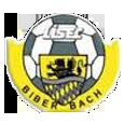 USC Biberbach