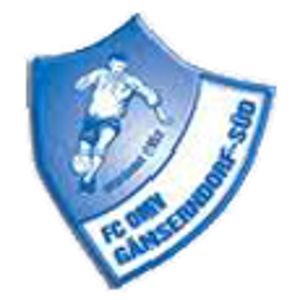 FC-OMV-Gänserndorf-Süd