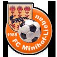 FC Minihof-Liebau