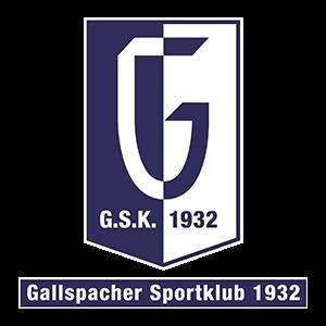 SK Ford Danner Gallspach