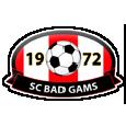 SC Bad Gams