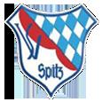 SV Spitz