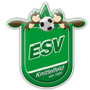 ESV Knittelfeld Juniors II