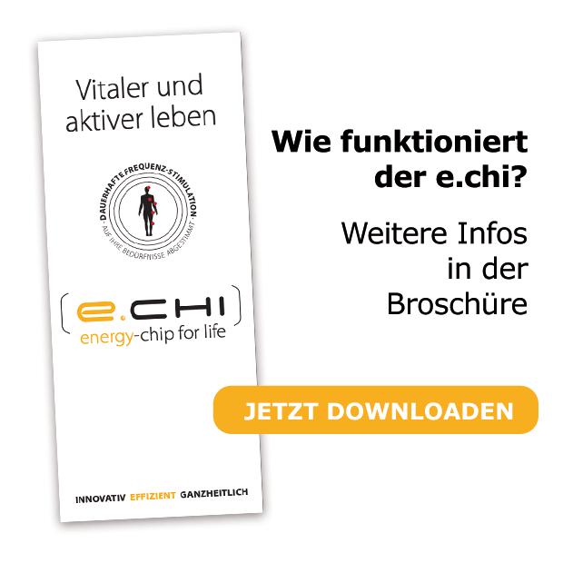 e-chi Broschüre