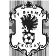 SV Peggau II