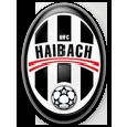 UFC Haibach