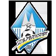 Team - SC Schwanenstadt 08