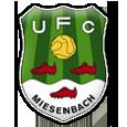 UFC Miesenbach